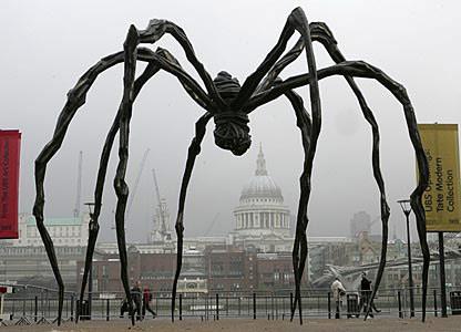 _44174011_spider416